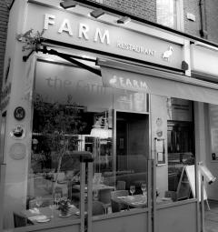 The-Farm-Dawson-St-Interior-123