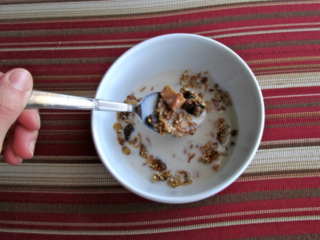 Apple Granola 8