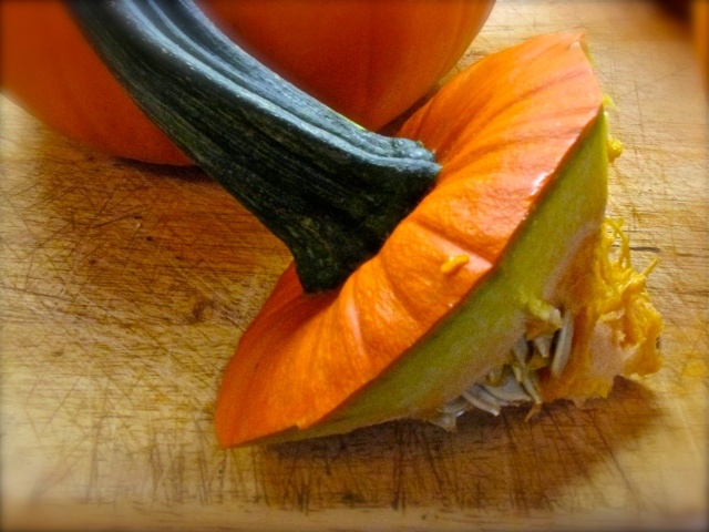Pumpkin Puree 5