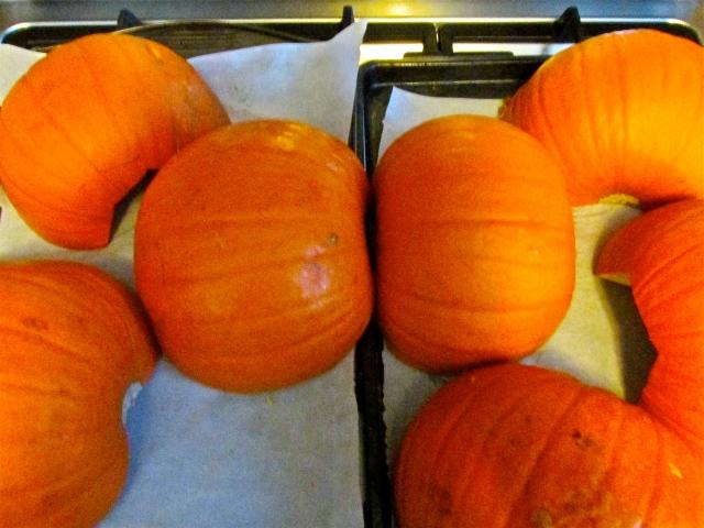 Pumpkin Puree 6
