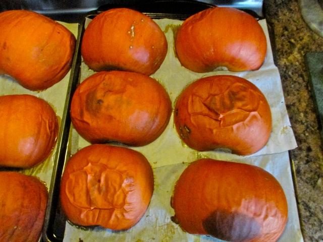 Pumpkin Puree 8